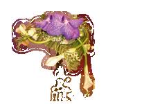 floriglesia03