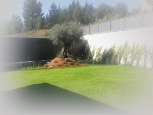 jardin01-1